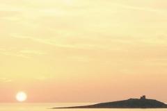 LeoniA-SEZ 2 Isola delle Femmine