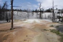 MelziT-USA Yellowstone